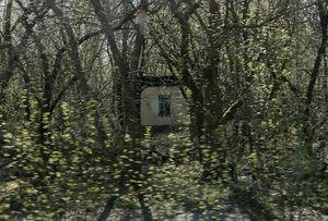 عکس/ شهر ارواح!