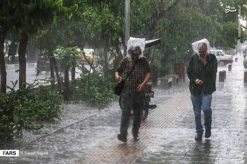 بارش باران شدید در تهران