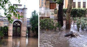 عکس/توپخانه پس از باران تهران