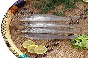 فیلم/ درآمدزایی با فروش آنلاین ماهی