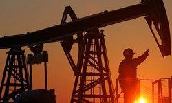 مقاومت شدید نفت در برابر کاهش قیمت