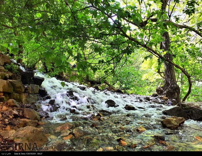 روستای پالنگان بسیار سرسبز و دارای آب و هوای بسیار مطلوب و دل انگیز در فصلهای بهار، پائیز و زمستان است و از این لحاظ از دیدنیترین نقاط استان کردستان به شمار می رود.