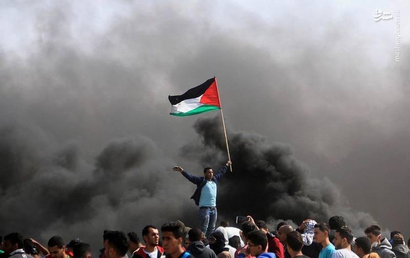 نکته قابل توجه در هفته جاری حجم بالای بادبادک هایی است که جوانان فلسطینی آماده کرده اند.