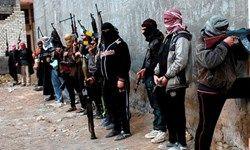 فیلم/ شکار تروریستهای تکفیری در ادلب سوریه