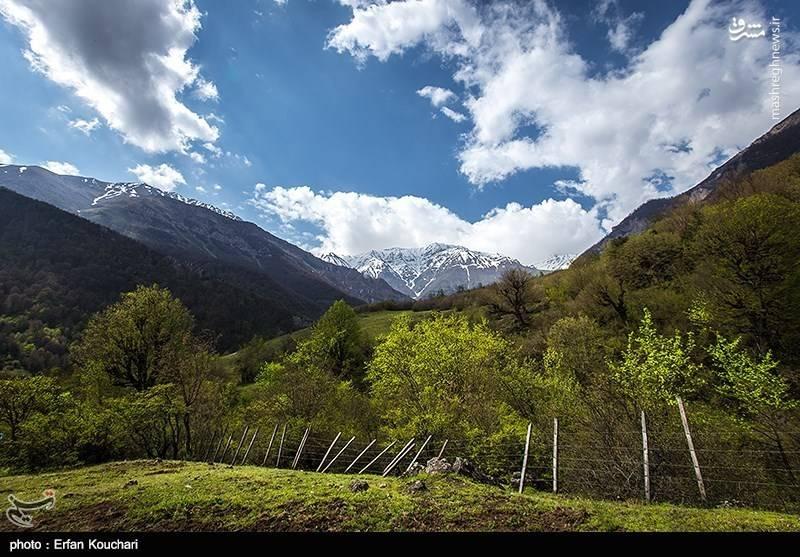 در حقیقت این دشت مرزی است که پوشش سبز و جنگلی شمال ایران را به پوشش برفی و یخچالی کوه الموت متصل می کند