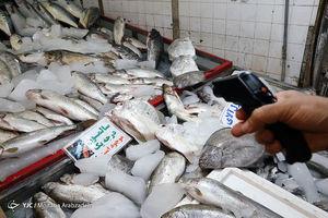 عکس/ وضعیت نگران کننده بهداشت در بازار ماهی