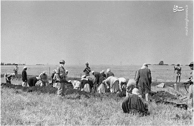 بدنبال اشغال بیتالمقدس و تشکیل آژانس یهود، احزاب و سازمانهای صهیونیستی در این منطقه تاسیس و توسعه یافتند.