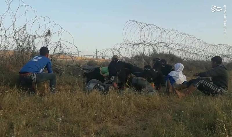 جوانان فلسطینی ساعاتی قبل از آغاز تظاهرات بزرگ بازگشت در نوار مرزی باریکه غزه، بخشهایی از سیمهای خاردار نصب شده در شرق البریج را قطع کرده و از میان برداشتند