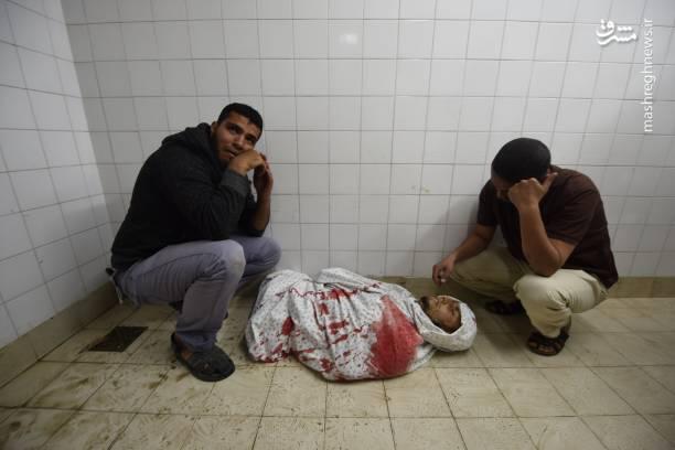 پیکر شهدای امروز فلسطین