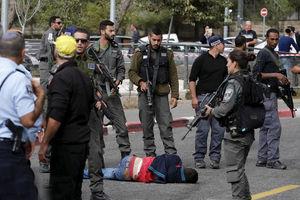 فیلم/ رویارویی فلسطینی ها با سربازان صهیونیست در الخلیل