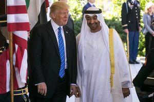 پیشنهادات مخفیانه فرستاده امارات به پسر ترامپ