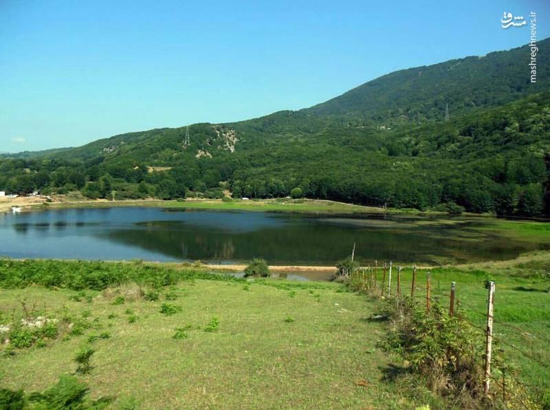 گونه های مختلفی ازپرندگان، حشرات و انواع آبزیان نیز ، در اطراف و داخل دریاچه زندگی می کنند.