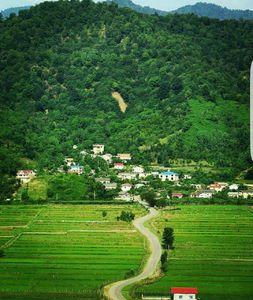 عکس/ منظرهای زیبا در گیلان