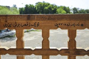 عکس/ نردهکشی در سیوسه پل