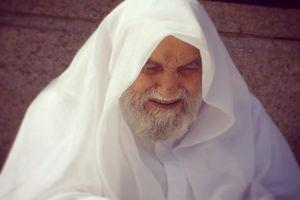 فیلم/ گوشهای از فضائل امام حسن(ع)در بیان آیتالله ناصری