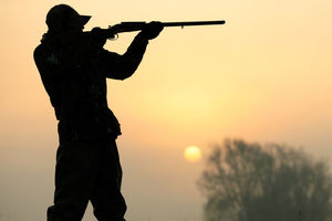 شکارچی غیرمجاز محکوم به تامین آب پرندگان شد