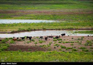 عکس/ کاهش آب سد ستارخان