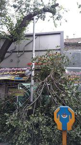 عکس/ خسارات طوفان در تهران