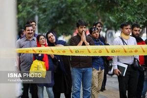 عکس/ شکسته شدن درختان در پی طوفان تهران