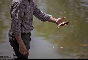 عکس/ نجات ماهیان گرفتار در زاینده رود