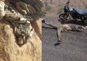 تیر تروریستها در شرق سوریه به سنگ خورد