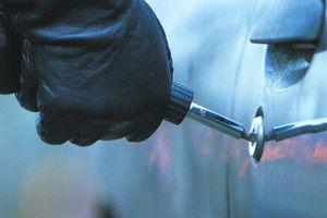 اعتراف برادران دوقلو به ۱۰۰ فقره سرقت