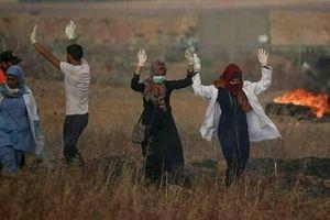 شهادت پرستار بیگناه/ فاجعه آتشفشان در گواتمالا/ تظاهرات کم سابقه در اردن+ تصاویر