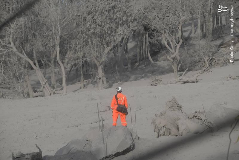جستجوی نیروهای امداد در اطراف منطقه فوران آتشفشان