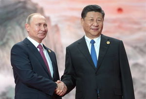 فیلم/ تلاش پوتین برای درست کردن غذای چینی