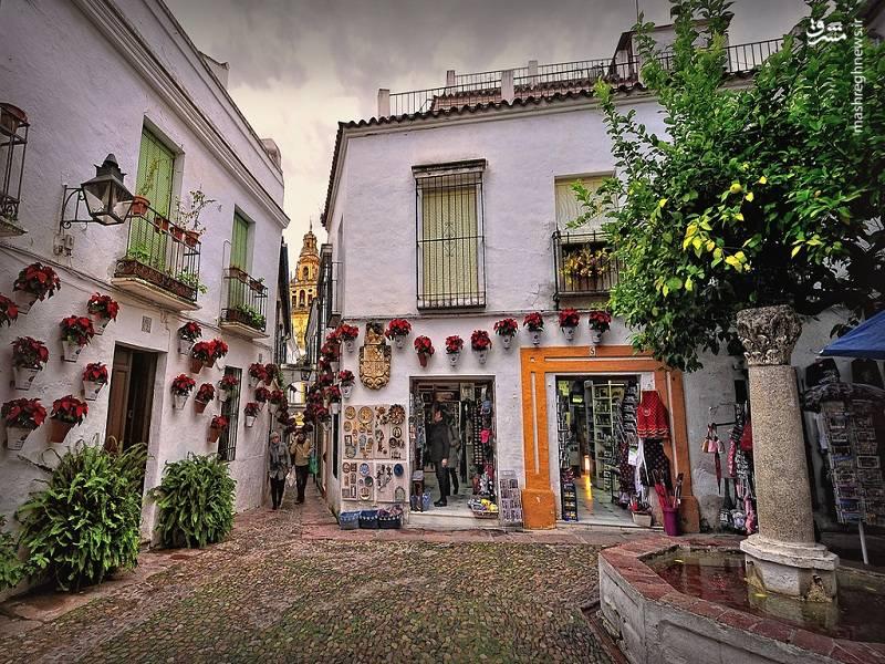 کوردوبا اسپانیا عکس های زیبا سفر به اسپانیا خیابان جالب خانه زیبا توریستی اسپانیا تصویر زیبا ایده های نو در صنعت گردشگری ایده های ناب گردشگری ایده های کسب درآمد ایده های خلاقانه گردشگری اخبار اسپانیا