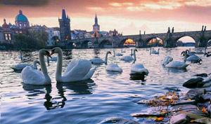 تصویری زبا از پایتخت جمهوری چک