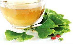 سلامت نمایه گیاه دارویی