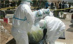 آمار وزارت بهداشت از تعداد مبتلایان به تب کریمه در کشور