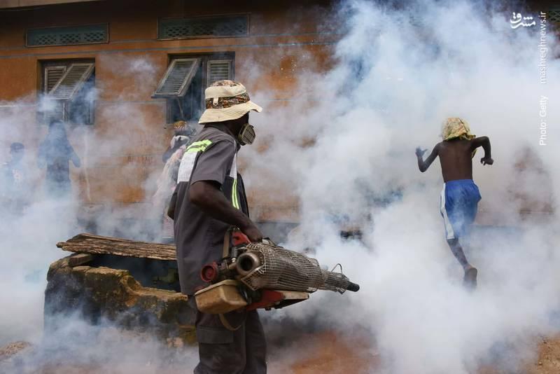 پاکسازی ساحل ایوُری در ساحل عاج از تب دنگی