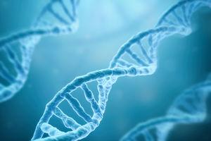 توصیه مفید برای غلبه بر ژن چاقی,