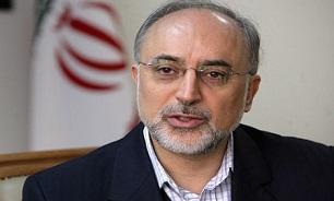 صالحی: از منافع ملی به نحو احسن دفاع میکنیم