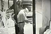 فیلم/ سارقانی که توسط صاحب مغازه رَکَب خوردند!