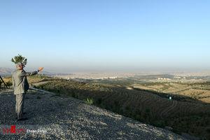 عکس/ بازدید شهردار تهران از جنگلکاری شمال پایتخت