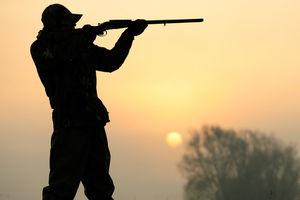 حاشیههای داغ شکارچیان آمریکایی