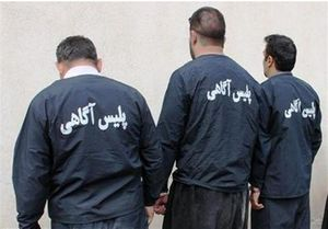 دستگیری ۱۳۸ سارق حرفهای پایتخت