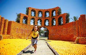 عکس/ جشنوارهای متفاوت در ترکیه