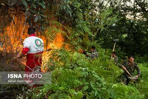 عکس/ آتشسوزی در ارتفاعات لنگرود
