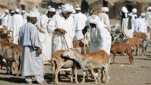 گوسفندی به نام ترامپ در سودان!