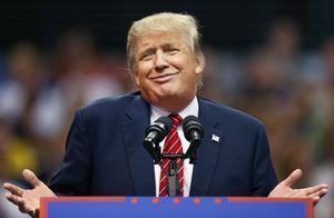 ترامپ مست - نمایه