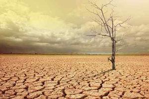 فیلم/ بحران خشکسالی را جدی بگیریم