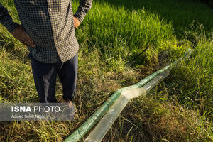 عکس/ خشک شدن رودخانهها در لنگرود