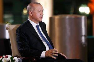 اردوغان به نشست ناتو میرود