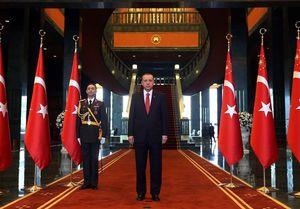 اردوغان: همه کشورهای منطقه برادر ما هستند