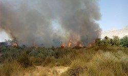 منشأ آتشسوزی هورالعظیم خارجی است