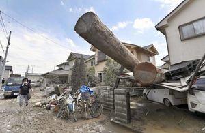 تصاویر جدید از خسارات شدید سیل در ژاپن